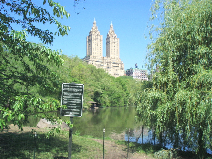 Central park polmone verde a new york crociera ndo for Dove soggiornare a new york