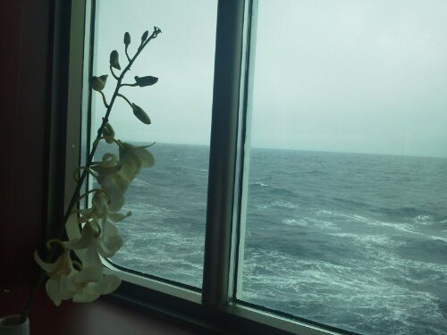 Navigando verso Capo Nord!